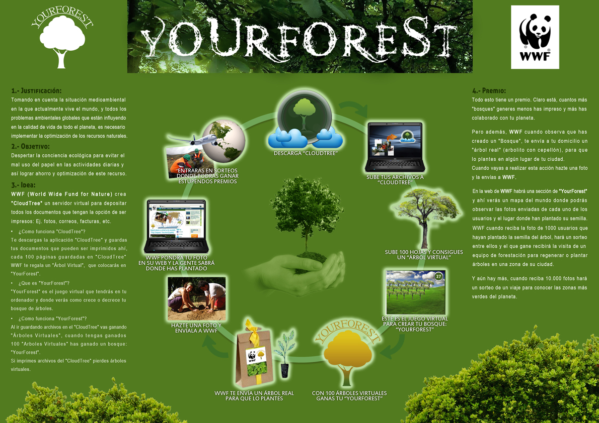 02 - Acción WWF - Yourforest